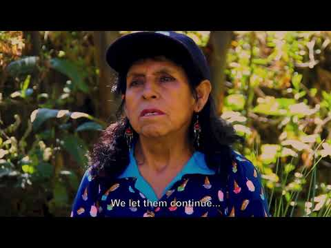 Embedded thumbnail for Guardianxs del Agua: Aurora Portal de Alcántara, San Juan de Cushunga