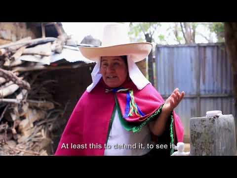 Embedded thumbnail for Guardianxs del Agua: Jovita Dilas Cabrera, Chetilla