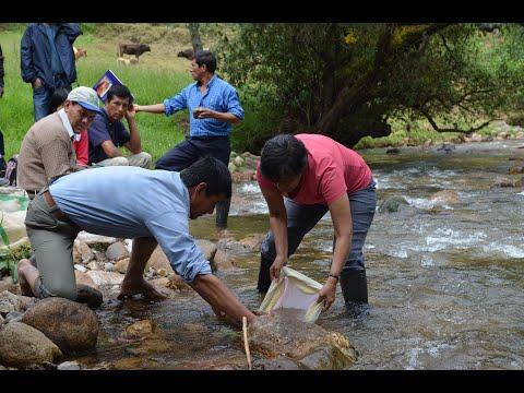 Embedded thumbnail for Vigilando los Bichitos para cuidar el agua
